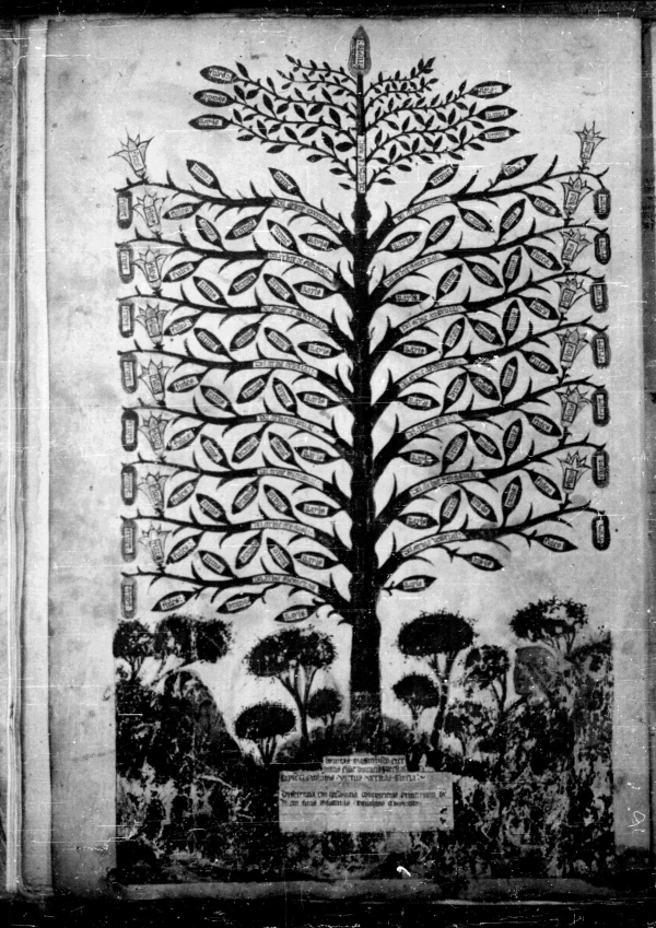 [Image: tree_of_science.jpg]